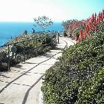 Crescent Bay Point Park (Walkway to the edge of the cliff)