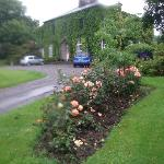 Rose gardens at Foxmount Country House