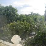 view of Hyde Park and Kensington Gardens from the bedroom