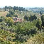 Maravillosa Toscana verde