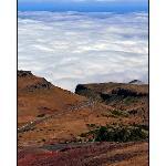 Madeira's roads ...