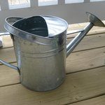 Plant waterer 2