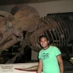 พิพิธภัณฑ์ประวัติศาสตร์ธรรมชาติแห่งชาติ สมิธโซเนียน ภาพถ่าย