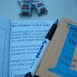 Gezerek İngilizce öğrenin:)