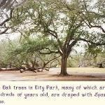 Audubon Park ภาพถ่าย