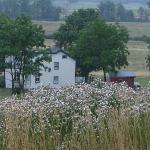 old house in battlefield area