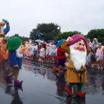 The dwarfs!!!!!!!!