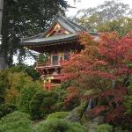 Pagoda in Golden Gate Park, San Francisco.