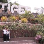 สวนเสือศรีราชา ภาพถ่าย