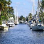 Jungle Queen Riverboat ภาพถ่าย