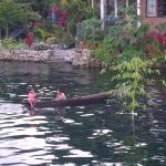 Lake Toba ภาพถ่าย