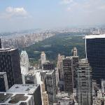 vista de central park des del Top Of The Rock