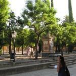 Giardino degli Aranci, all'interno della Chiesa-Moschea di Cordoba