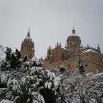 Catedral Salamanca, jardín de Calixto y Melibea.