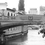 สะพานมังกร ภาพถ่าย