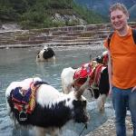 Me and an yak ox.
