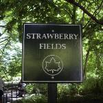 Strawberry Field's Forever! You just have to stand out from the 72nd street subway station...and