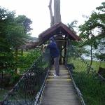 Photo de Ecolodge Bukit Lawang