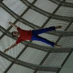 Flying body, Museum of Fine Arts