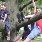 Filippo, Marcello, and Jojo were at the tree. Both of boys like look monkey.
