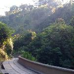 walkway down to the river