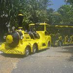 Trolley/Train