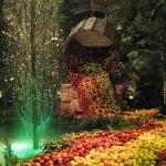 Bellagio - botanic garden