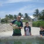 Boys and turtle