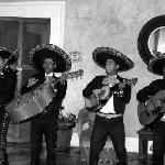 Mariachi performing during rehearsal dinner