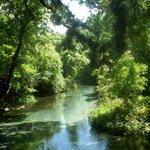 Rock Springs Run State Reserve