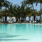 piscina maravillosa