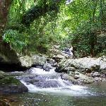 Kamerunga