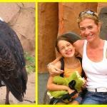 Foto de Parque Ecológico Las Águilas del Teide