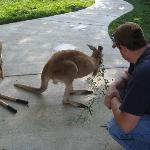 Brian with Kangaroo