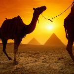 Camel ride around the Pyramids of Giza during sunset