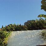 vista dell'acropoli dalla nostra terrazza