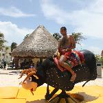 bull riding at the beach party