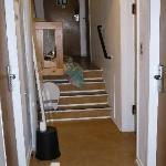 Stato di pulizia dei corridoi - The floor