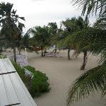 Another view!! Lovely coconut trees and beach!!