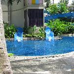 Waterslide and Pool