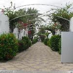 Viale interno della struttura per accesso alla spiaggia