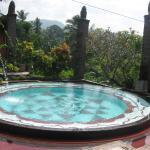 Shankari's Bali Retreat Photo
