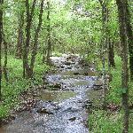 Foto de Riverview Cabins
