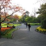 St. Steven's Green Park