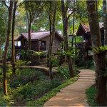 Tad Fane Resort