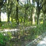 Viale dei Giardini del Frontone, Perugia