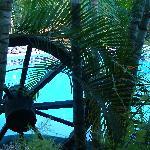 Photo of Palm Inn