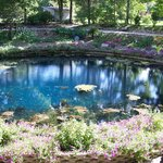 The Blue Spring at Eureka Springs West