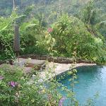 ヴィラ内のプール
