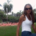 Busch Gardens (Tampa)